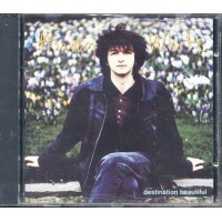 Andy White - Destination Beautiful Cd