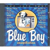 Blue Boy Compilation - Sonny & Cher/Drifters/Marvin Gaye/Zombies Cd